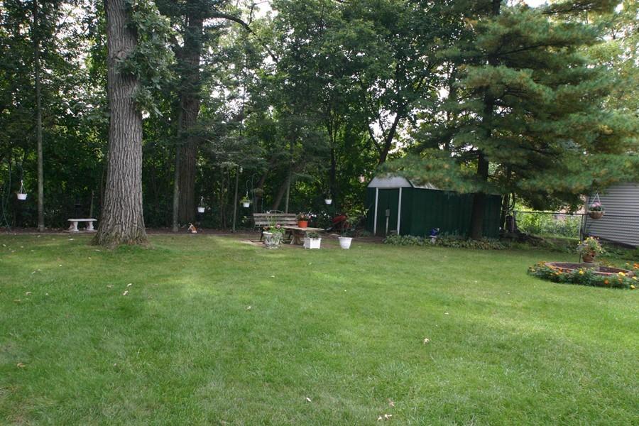 alfa img showing great backyard trees